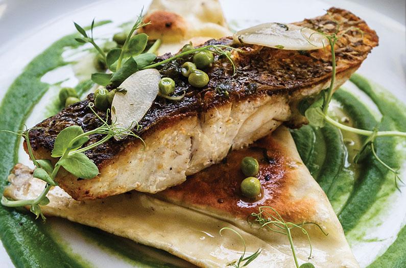 Viamonte Dining - Salmon