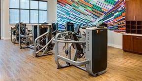 gym and training center